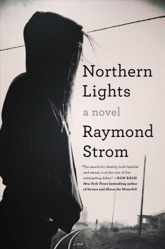 Northern lights : a novel / Raymond Strom.