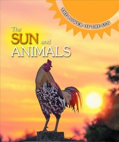 The Sun and Animals