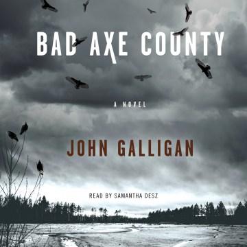 Bad Axe County : a novel [electronic resource] / John Galligan.