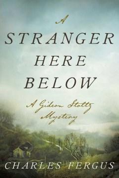 A stranger here below : a Gideon Stoltz mystery