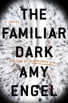 The familiar dark : a novel / Amy Engel.