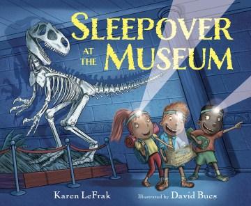 Sleepover at the museum / Karen LeFrak ; illustrated by David Bucs.