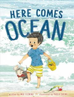 Here comes ocean / written by Meg Fleming ; illustrated by Paola Zakimi.