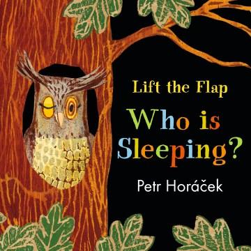 Who is sleeping? / Petr Horáek.