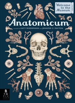 Anatomicum : welcome to the museum: admit all / illustrated by Katy Wiedemann ; written by Jennifer Z. Paxton.