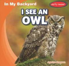 I See an Owl
