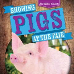 Showing Pigs at the Fair