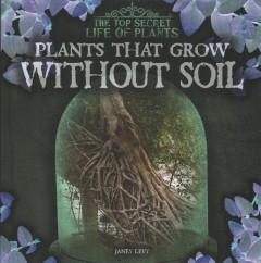Plants That Grow Without Soil