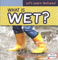 What Is Wet?