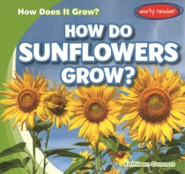 How Do Sunflowers Grow?