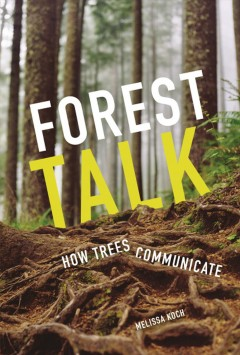 Forest talk : how trees communicate / Melissa Koch.