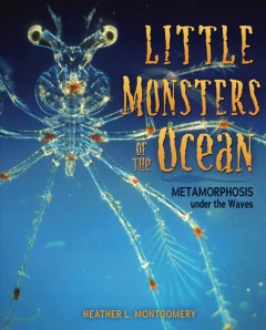 Little Monsters of the Ocean : Metamorphosis Under the Waves