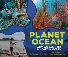 Planet ocean : why we all need a healthy ocean