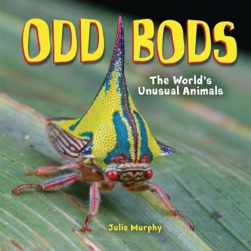 Odd bods : the world's unusual animals
