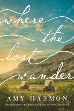 Where the lost wander / Amy Harmon.