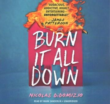 Burn It All Down (CD)