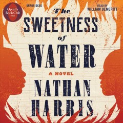 The sweetness of water : a novel / Nathan Harris.