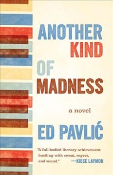 Another kind of madness : a novel / Ed Pavlic.