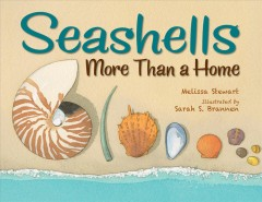 Seashells : More Than a Home