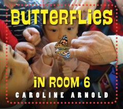 Butterflies in room 6 : see how they grow