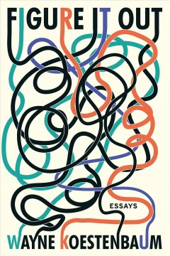 Figure it out : essays