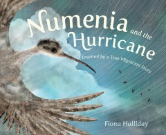 Numenia and the hurricane : inspired by a true migration story