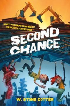 Second Chance : Big Rock Sky