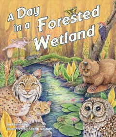 A day in a forested wetland / by Kevin Kurtz ; illustrated by Sherry Neidigh.