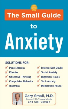 The small guide to anxiety / Gary Small, MD, and Gigi Vorgan.