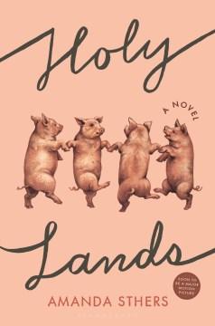 Holy lands : a novel / Amanda Sthers.