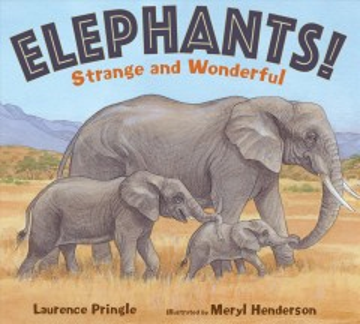 Elephants! / Strange and Wonderful