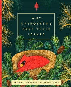 Why the evergreens keep their leaves