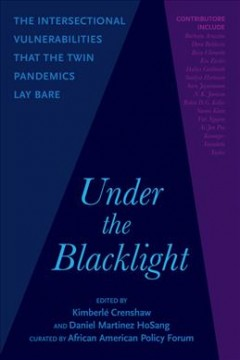 Under the Blacklight : The Intersectional Vulnerabilities That the Twin Pandemics Lay Bare