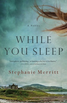 While you sleep : a novel / Stepahnie Merritt.