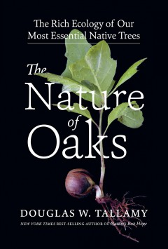 The nature of oaks : the rich ecology of our most essential native trees / Douglas W. Tallamy.