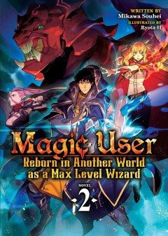 Magic user reborn in another world as a max level wizard. Novel 2