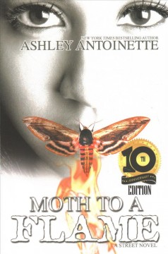 Moth to a Flame : Tenth Anniversary Edition