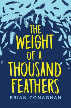 The weight of a thousand feathers by Brian Conaghan.