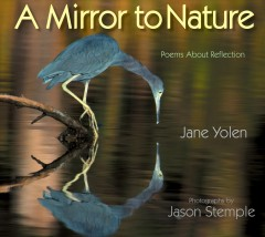A mirror to nature : poems about reflection