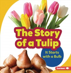 The Story of a Tulip : It Starts With a Bulb