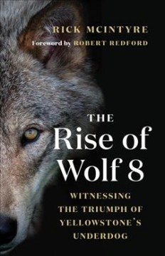 The Rise of Wolf 8 : Witnessing the Triumph of Yellowstone's Underdog