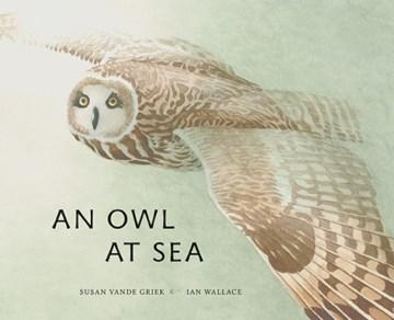 An Owl¡at Sea