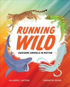 Running Wild : Awesome Animals in Motion