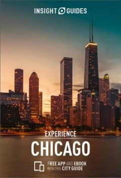 Insight Guides Experience Chicago