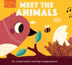 Meet the Animals : For Small Hands and Big Imaginations!