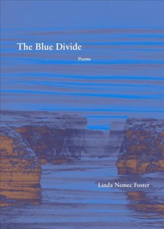 The Blue Divide : Poems