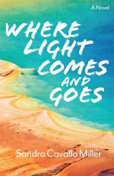 Where light comes and goes : a novel