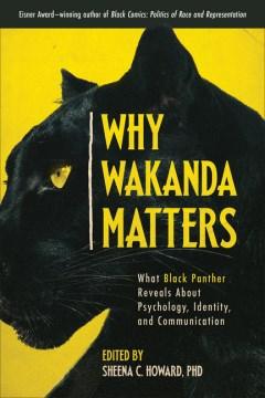 Why Wakanda matters : what Black Panther reveals about psychology, identity, and communication