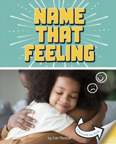 Name that feeling : a turn-and-see book