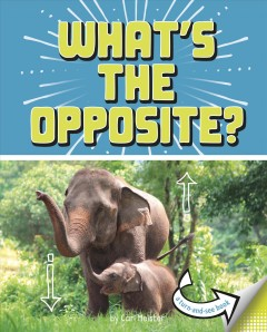What's the opposite? : a turn-and-see book